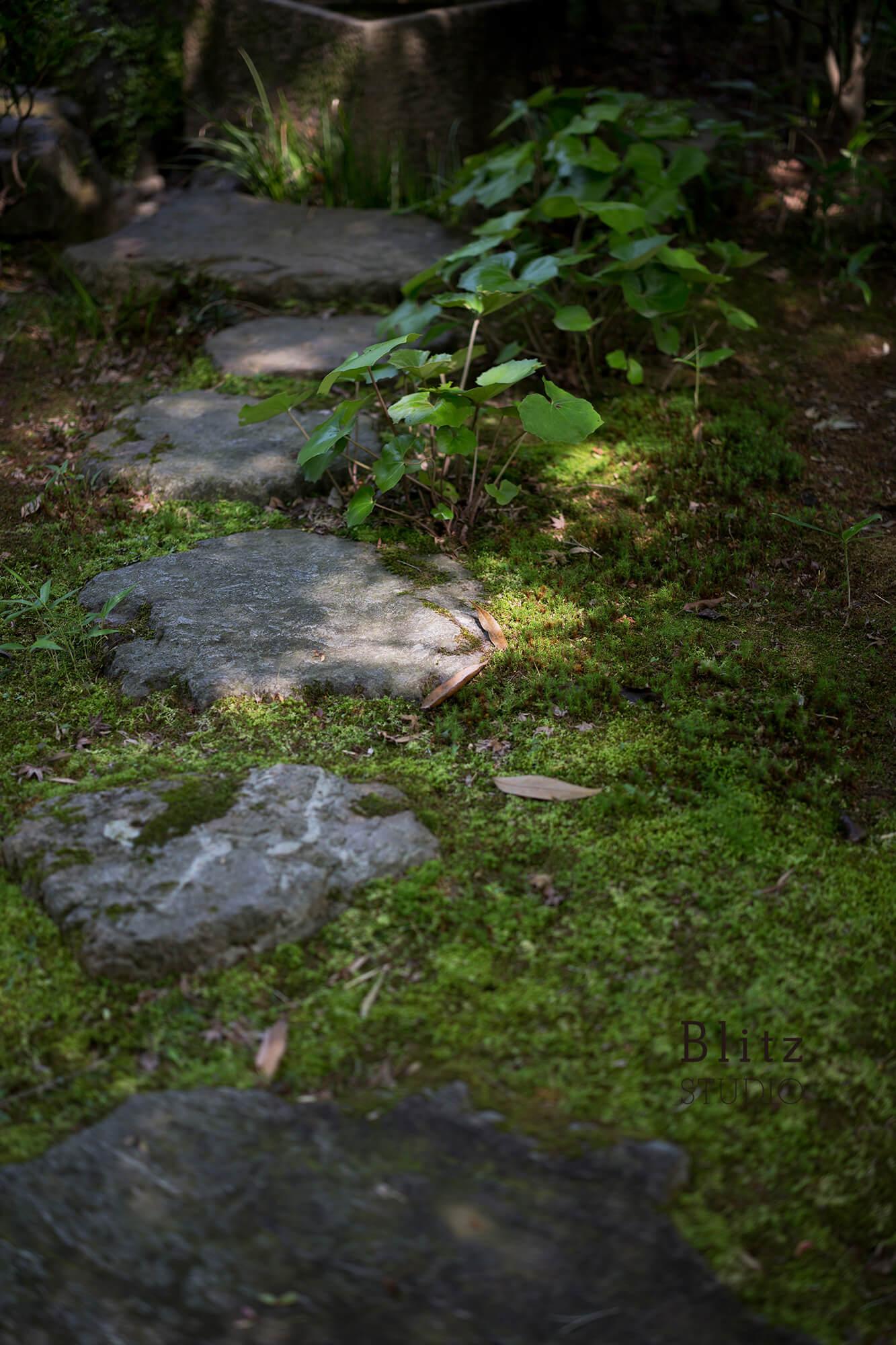 『宗像名残荘』建築写真・竣工写真・インテリア写真10