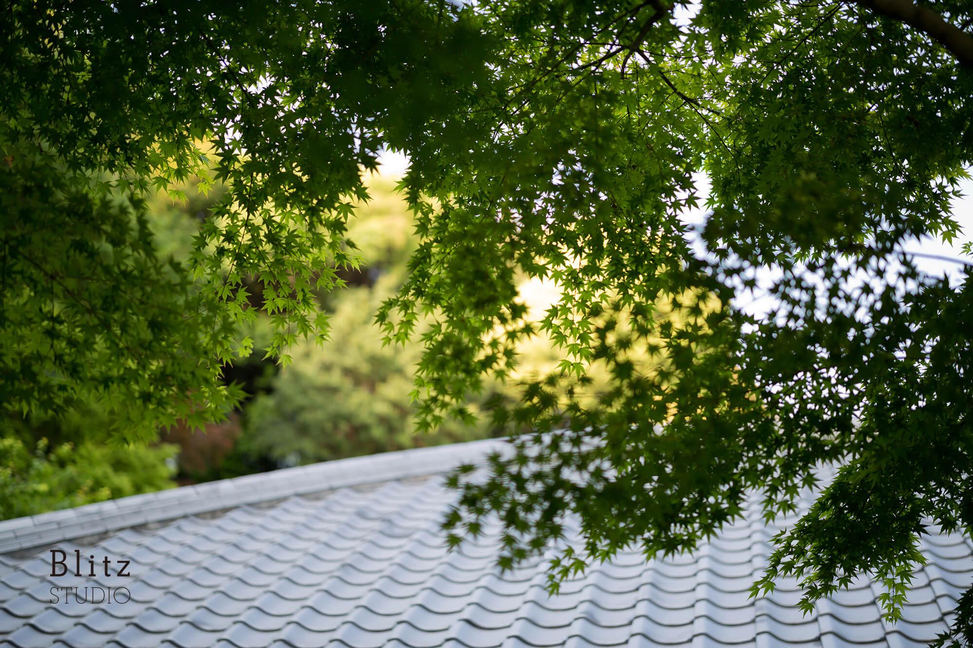 『宗像名残荘』-福岡県宗像市-建築写真・竣工写真・インテリア写真5