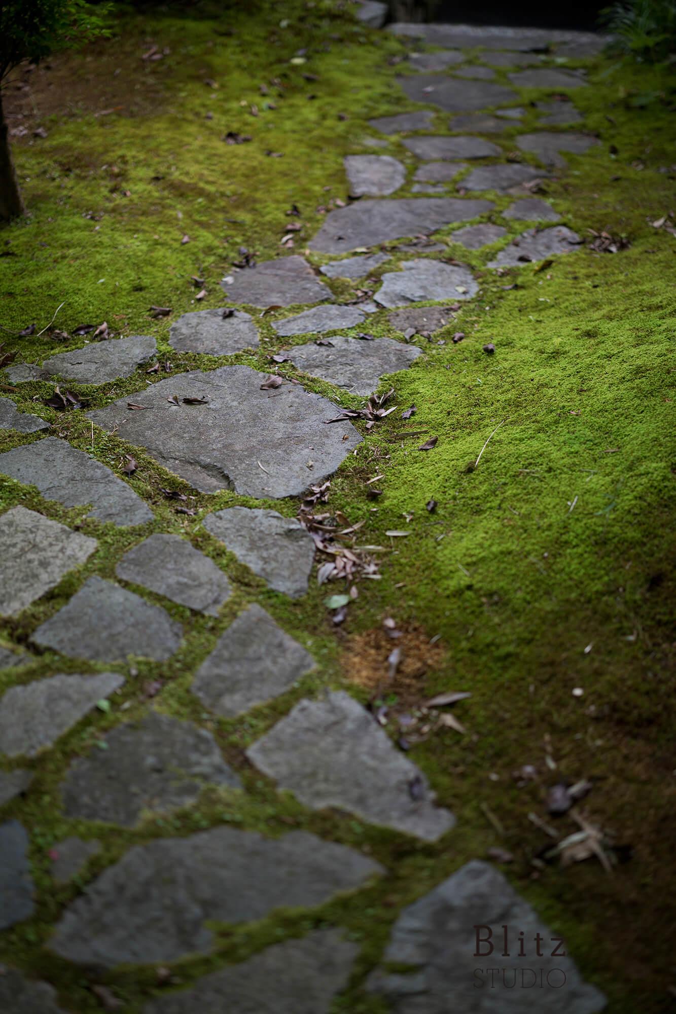 『宗像名残荘』建築写真・竣工写真・インテリア写真11
