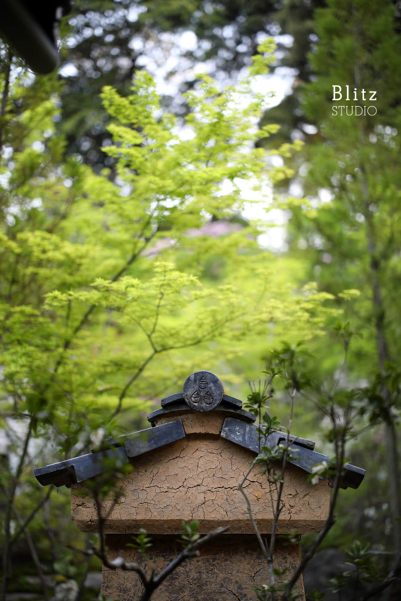 『庭人 山口陽介 西海園芸』建築写真・竣工写真・インテリア写真6