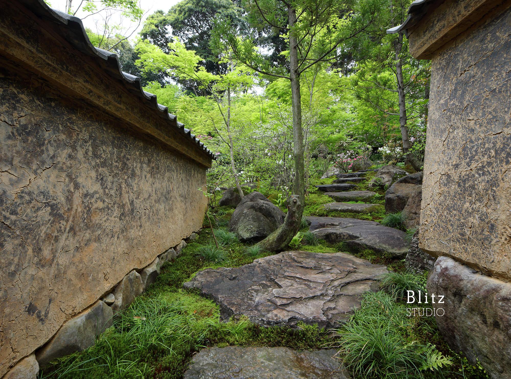 『庭人 山口陽介 西海園芸』建築写真・竣工写真・インテリア写真10