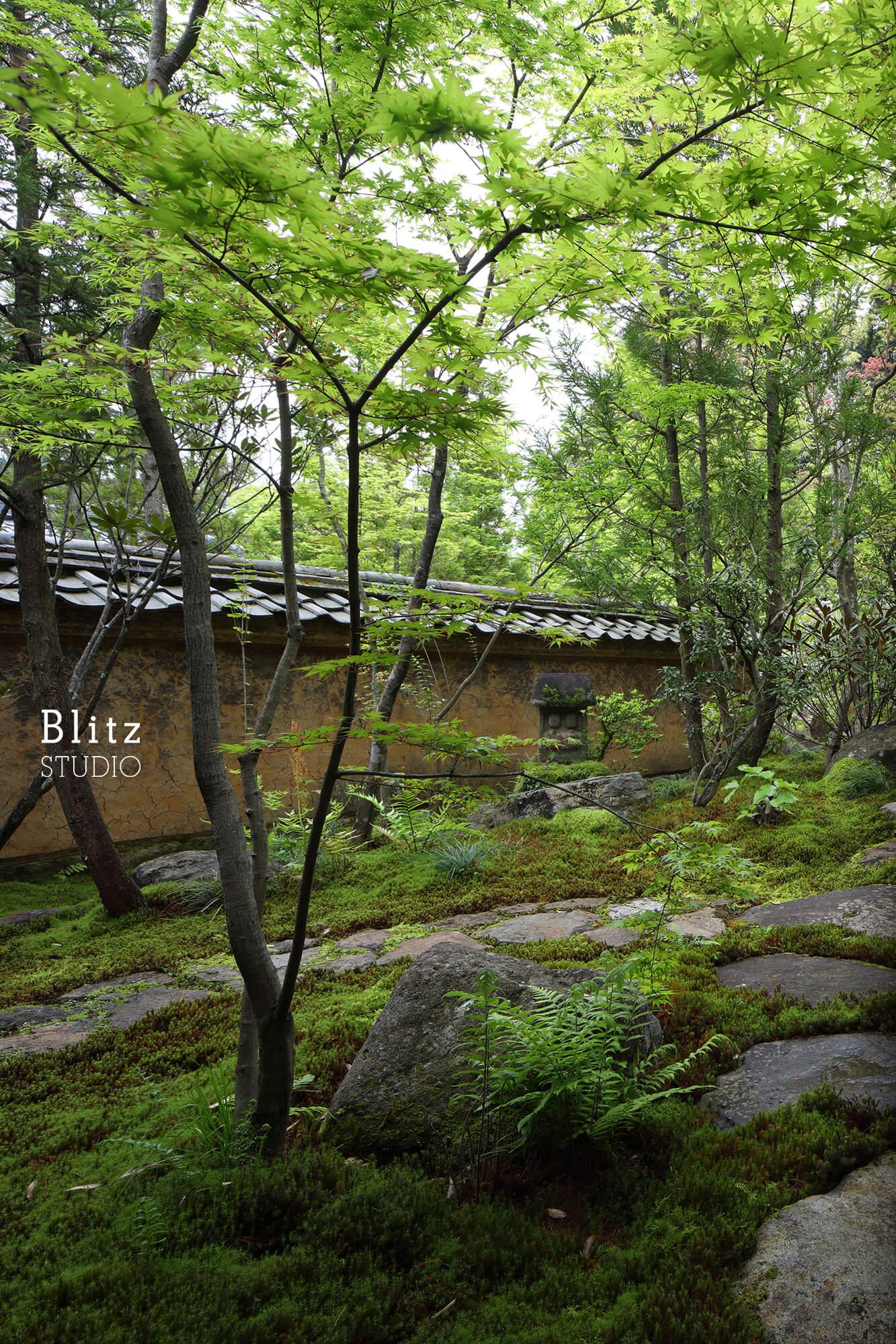 『庭人 山口陽介 西海園芸』建築写真・竣工写真・インテリア写真12