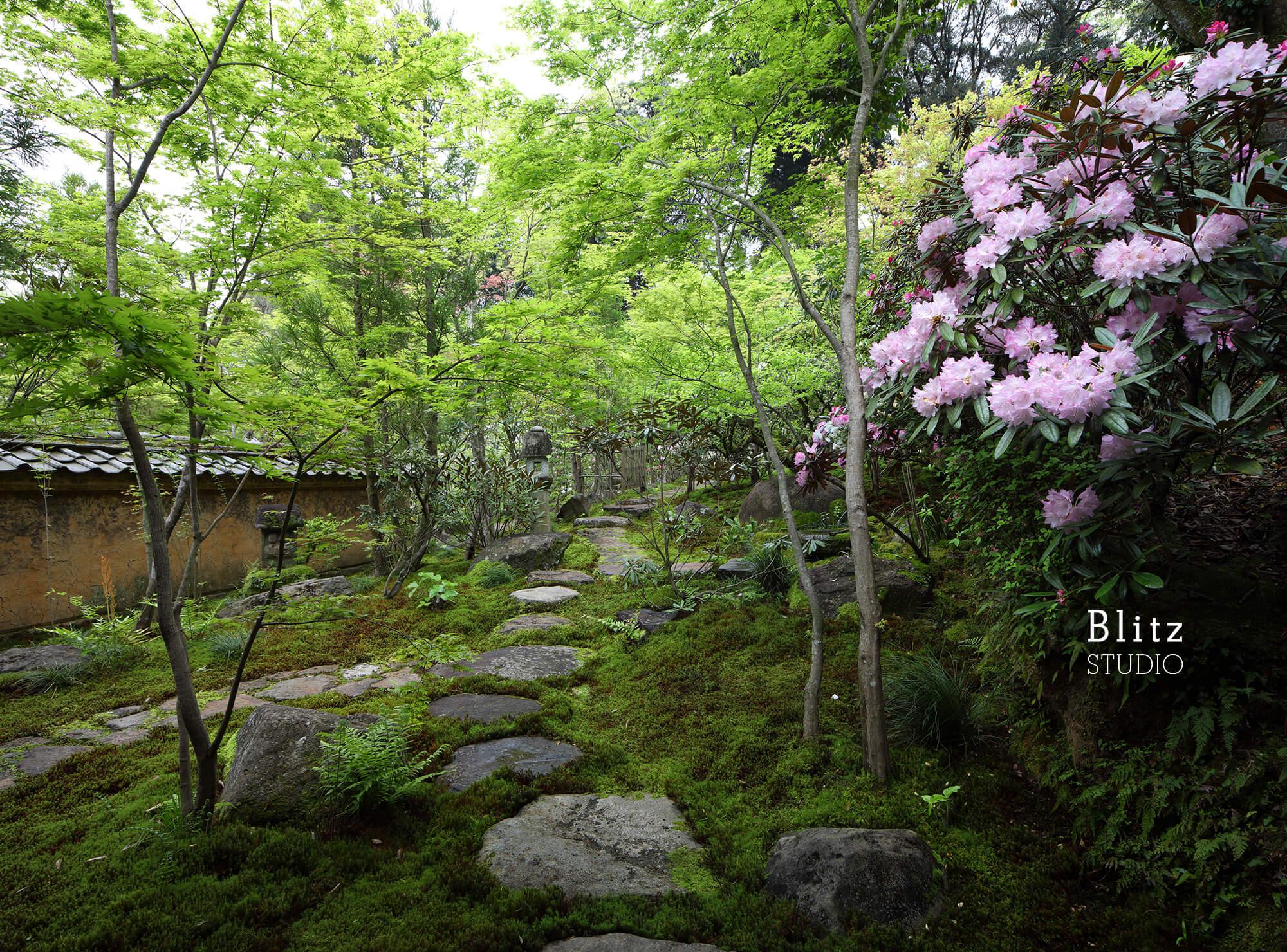 『庭人 山口陽介 西海園芸』建築写真・竣工写真・インテリア写真13