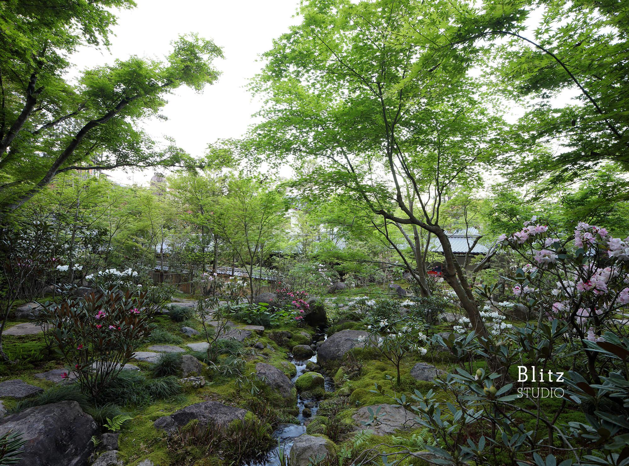 『庭人 山口陽介 西海園芸』建築写真・竣工写真・インテリア写真17