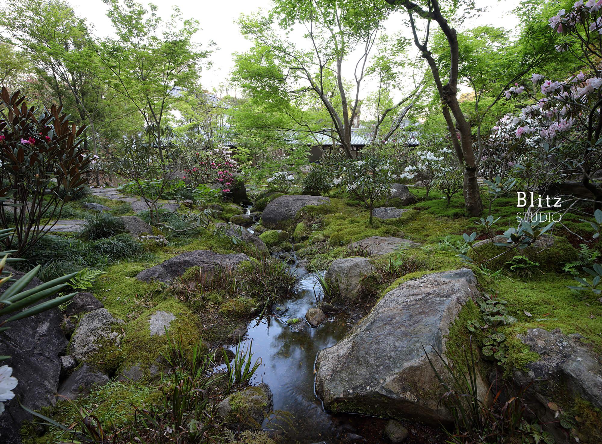 『庭人 山口陽介 西海園芸』建築写真・竣工写真・インテリア写真16