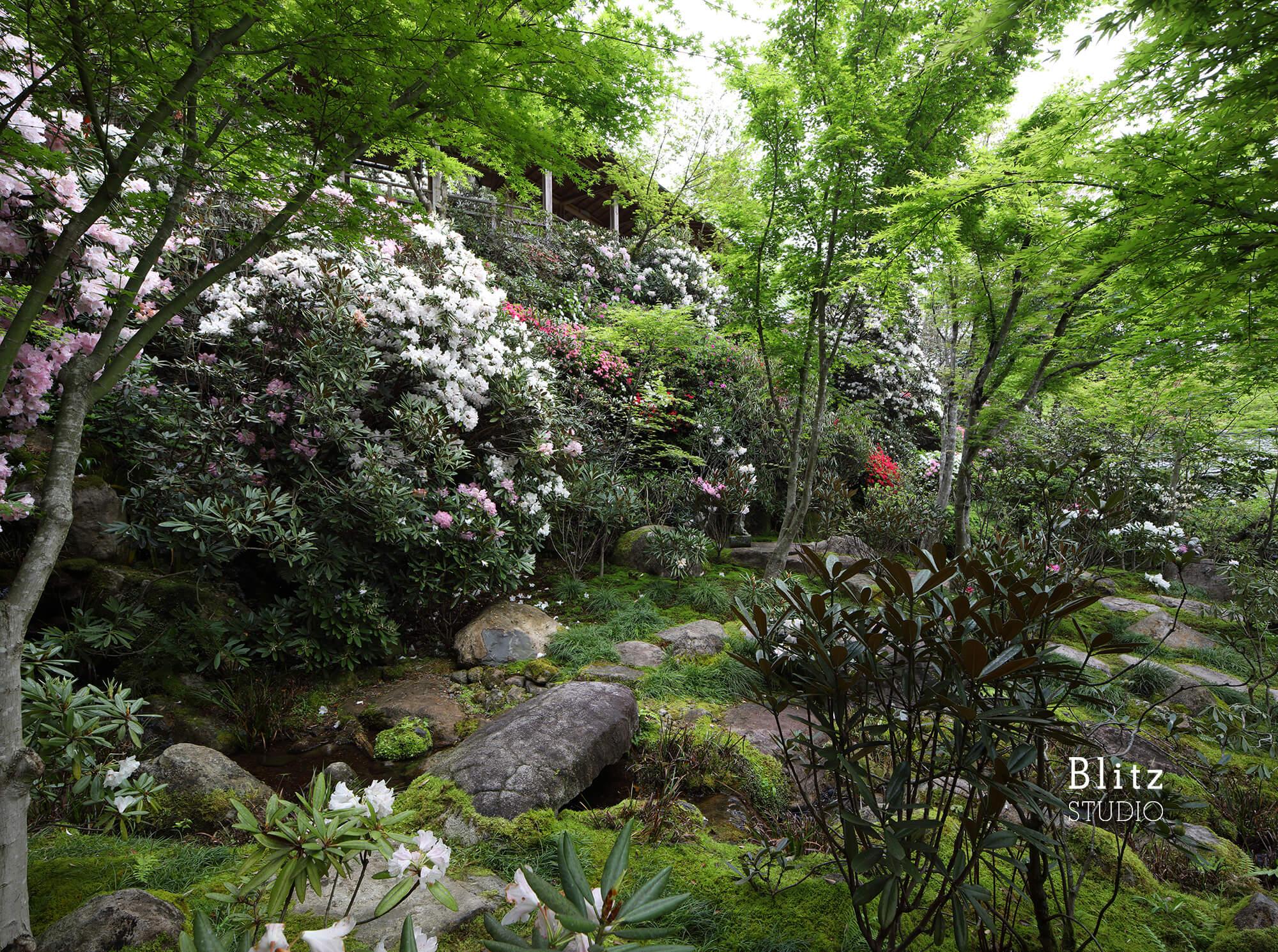『庭人 山口陽介 西海園芸』建築写真・竣工写真・インテリア写真20