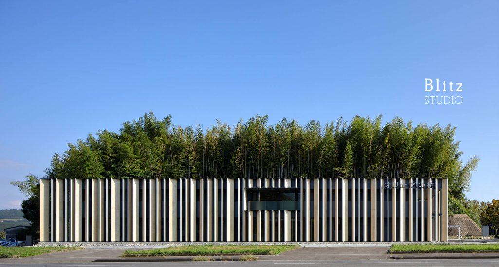 『オリーブの樹』-佐賀県伊万里市-建築写真・竣工写真・インテリア写真