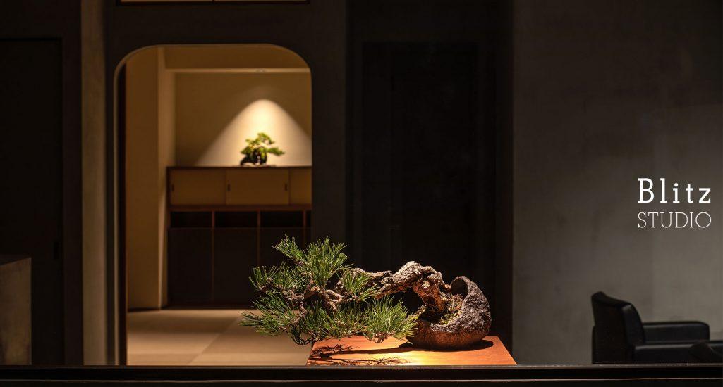 『盆栽家・島津拓哉 04』-美容室  La collectio-建築写真・竣工写真・インテリア写真